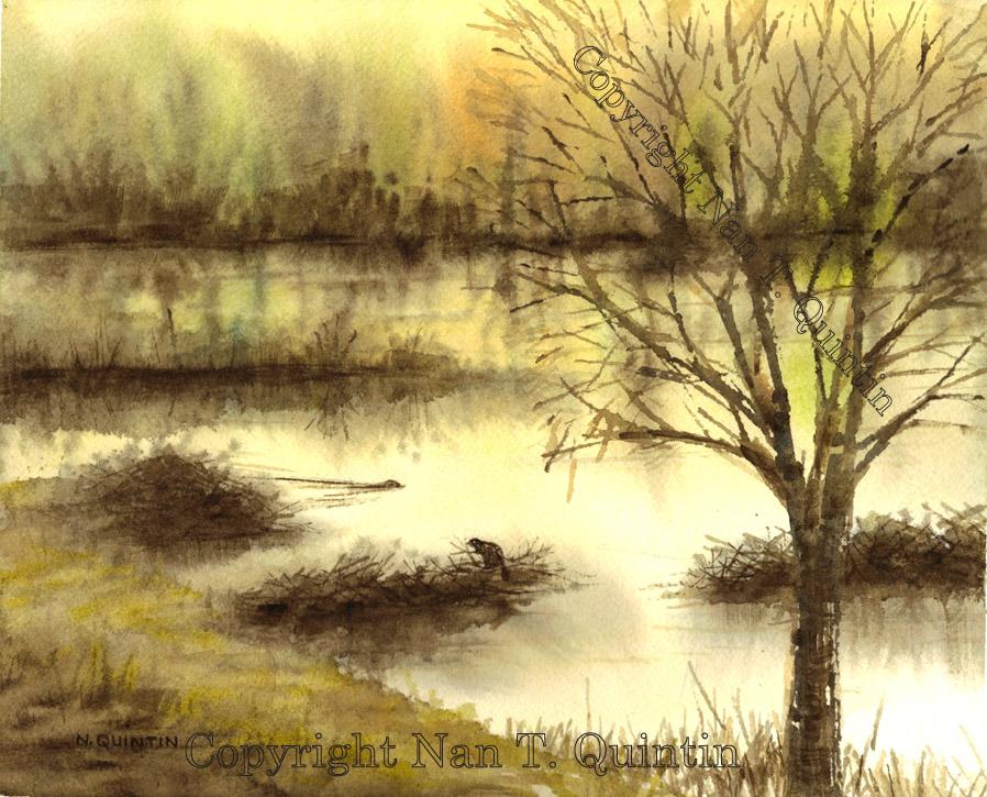 Twilight at Beaver Brook