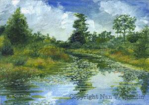 Meadow Pond, Carlisle MA